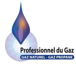 Professionnels-du-gaz